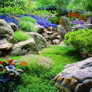 Home Designs: Amazing Rock Garden Designs For Your Home