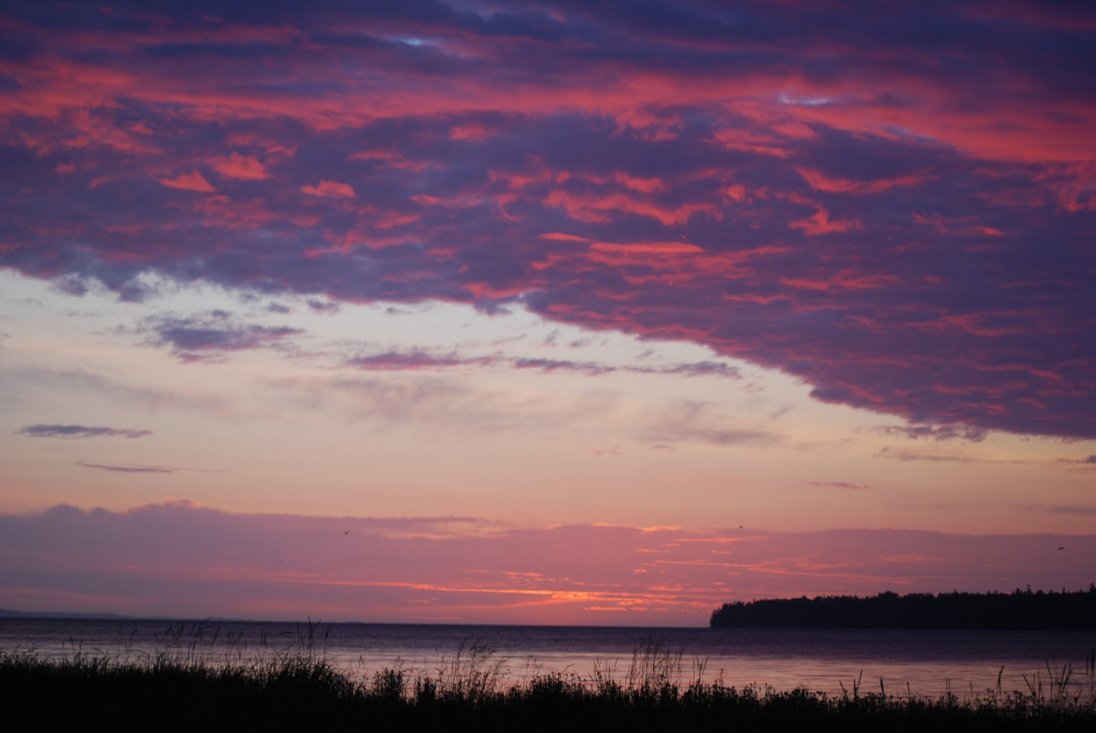 Eclectic (at Best): The Five Best Things about Birch Bay ...