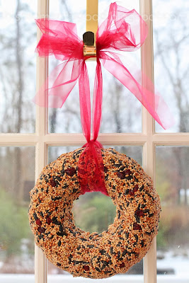 This moment is good bird seed wreaths for Bird seed glue recipe