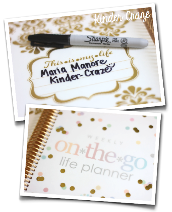 Erin Condren Life Planner Gold Edition