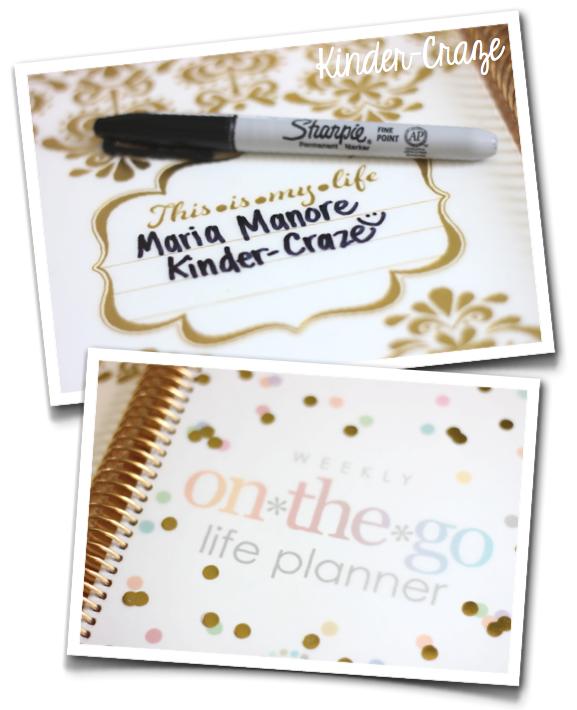 Erin Condren Life Planner Gold Edition sneak peek