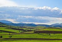 field, sky, grass