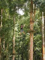 Treetop Adventure Botanical Garden