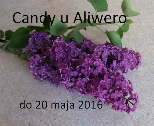 Moje rocznicowe candy