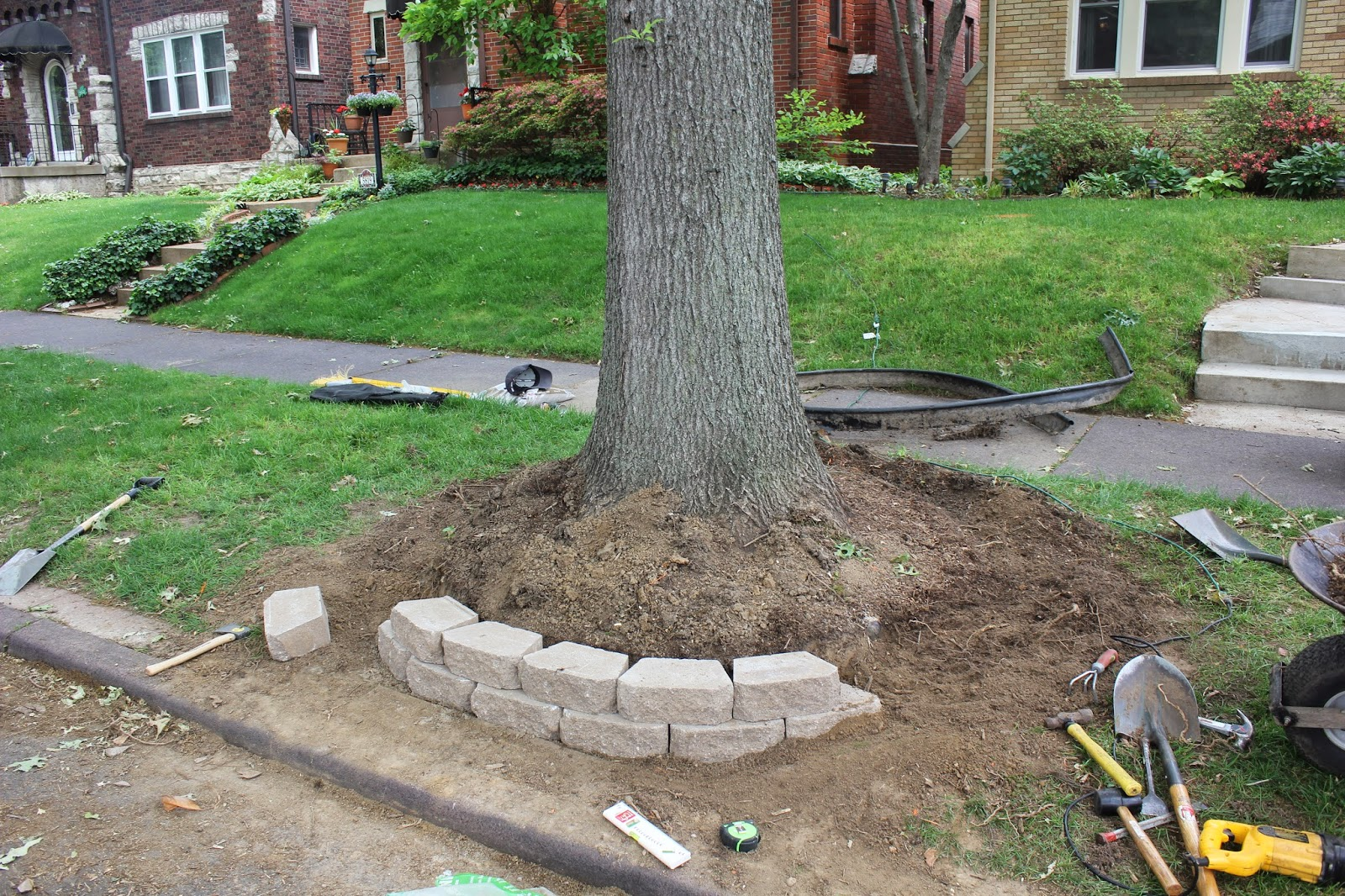 Landscaping Around Trees With Big Roots : By the brooke meet my lawn boy