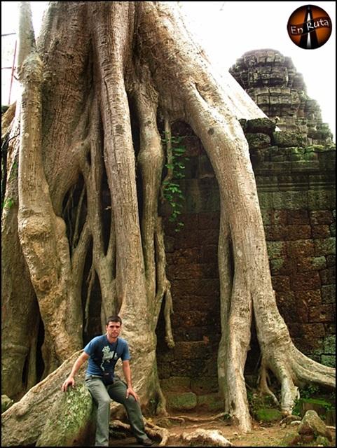 Ta-Prohm-Templos-de-Angkor_11
