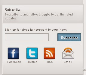 Widget Email Subscription dan Akun Media  Sosial Keren