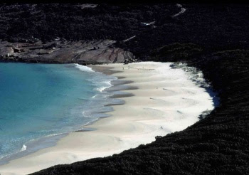beach cusps in south Western Australia