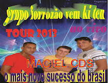 GRUPO FORROZO VEM KI TEM CD STUDIO 2013