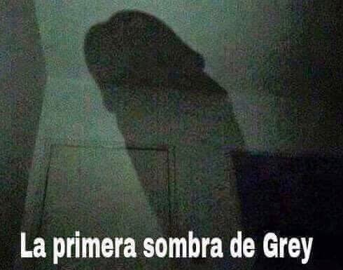 primera sombra de grey