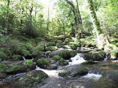 Becky Falls, Devon