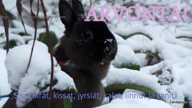 http://rabbits-dream.blogspot.fi/2013/12/30-lukiankohdalla-arvonta.html