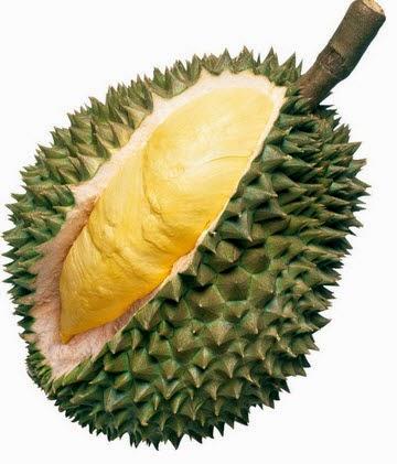 Memilih Buah Durian Yang Lezat