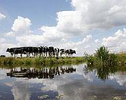 Foto Kaderrichtlijn Water - dossier Groen Kennisnet