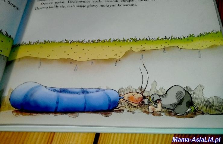 Bajki Krupska dżdżownice w dżdżysty dzień 2 ilustracja