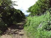 Fazenda São Pedro - Ibaretama - Ceará