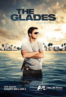The Glades - Download Torrent Legendado