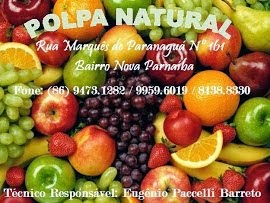 POLPA NATURAL