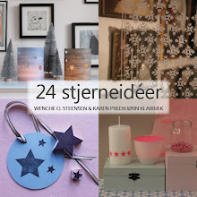 24 Stjerner En DIY Bog