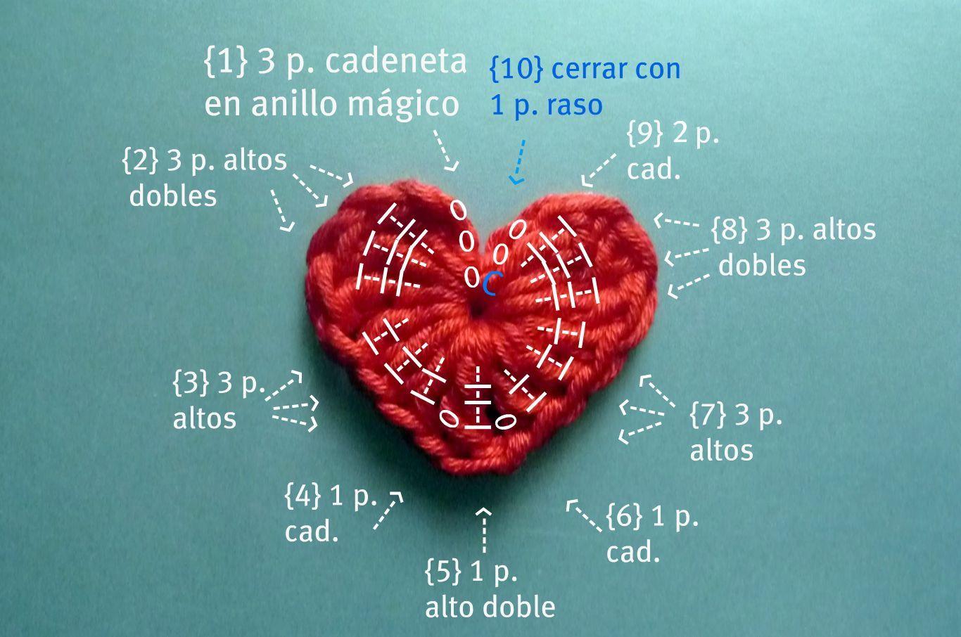 Taller de Gis: Anatomía del corazón