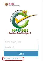 BKN Perpanjang Pendaftaran e-PUPNS Sampai Tanggal 31 Januari 2016