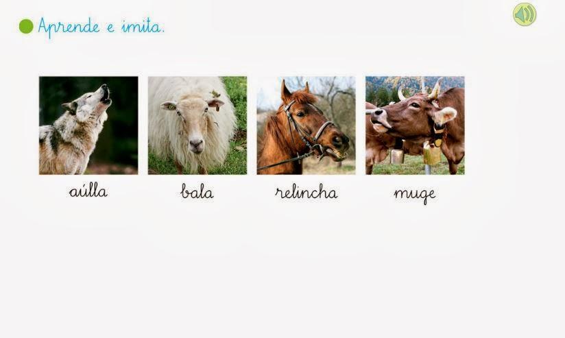 http://primerodecarlos.com/primerodecarlos.blogspot.com/enero/sonidos_animales.swf