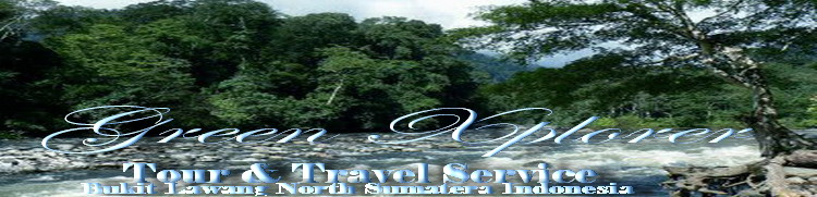 Xplorer Bukit Lawang l Xpedition Jungle l  Green XPlorer l Bukit Lawang North Sumatera - Indonesia