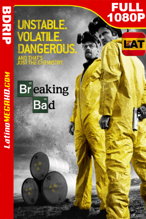 Breaking Bad Temporada 3 (2010) Latino Full HD BDRIP 1080P ()