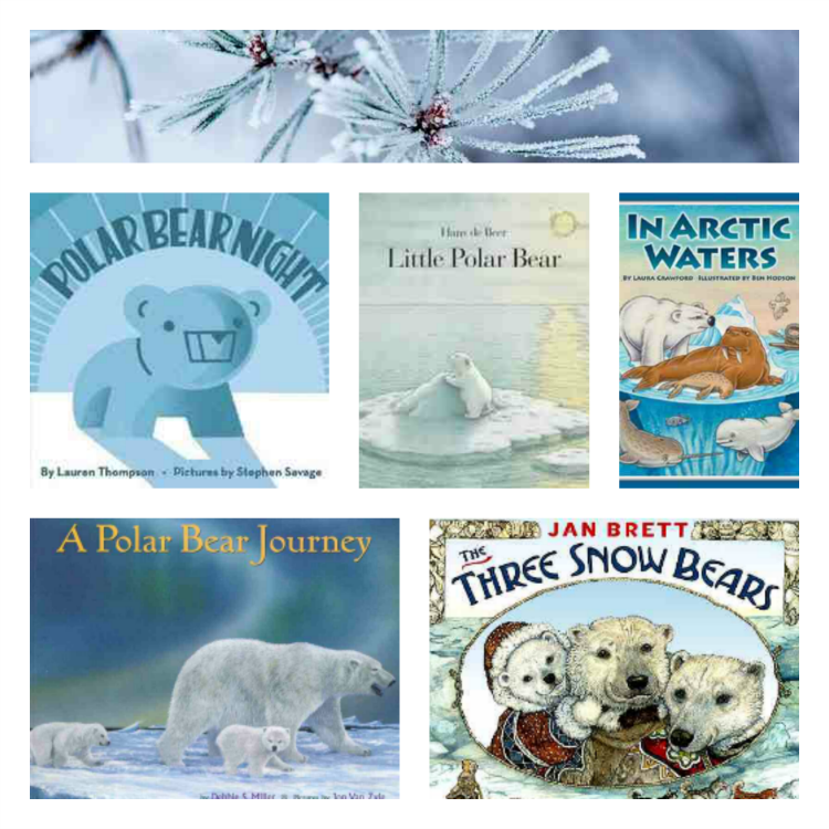 arctic, polar bears, penguins, preschool themes