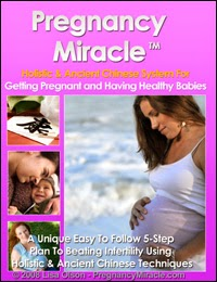 Pregnancy Miracle™ - Book Covers