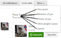 Google Plus Notifications Options
