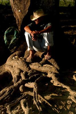 Llanero sentado en las raices de un árbol en la orilla del rio Cojedes, Venezuela