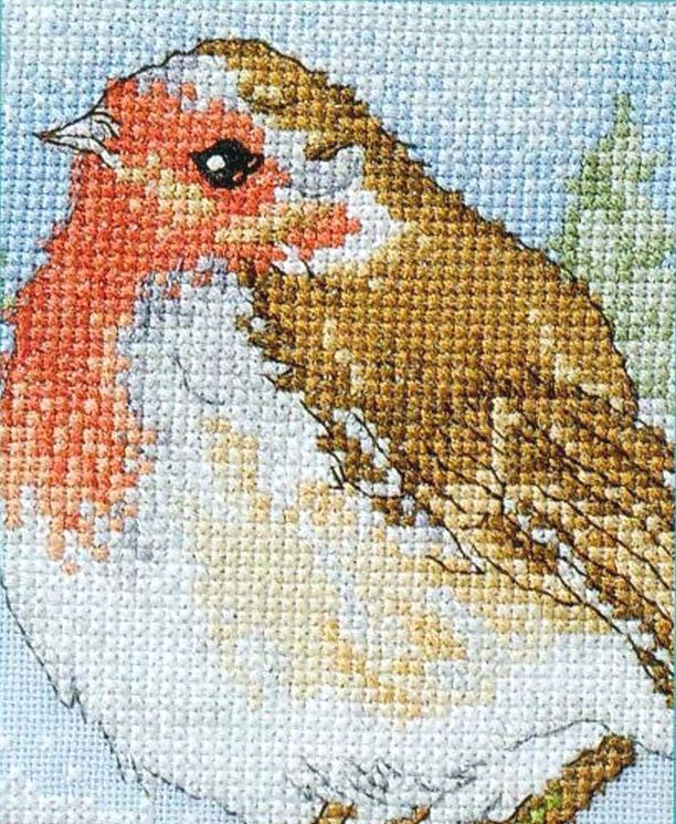 Вышивка птицы