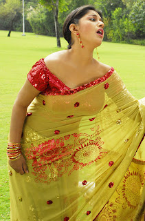Meera-Jasmine-hot-in-saree-2