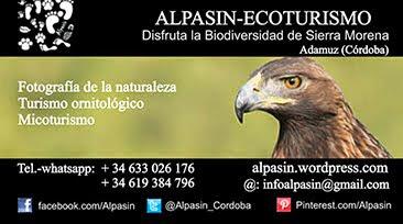 Alpasin, Ecoturismo en Sierra Morena