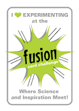 Fusion Challenge Blog