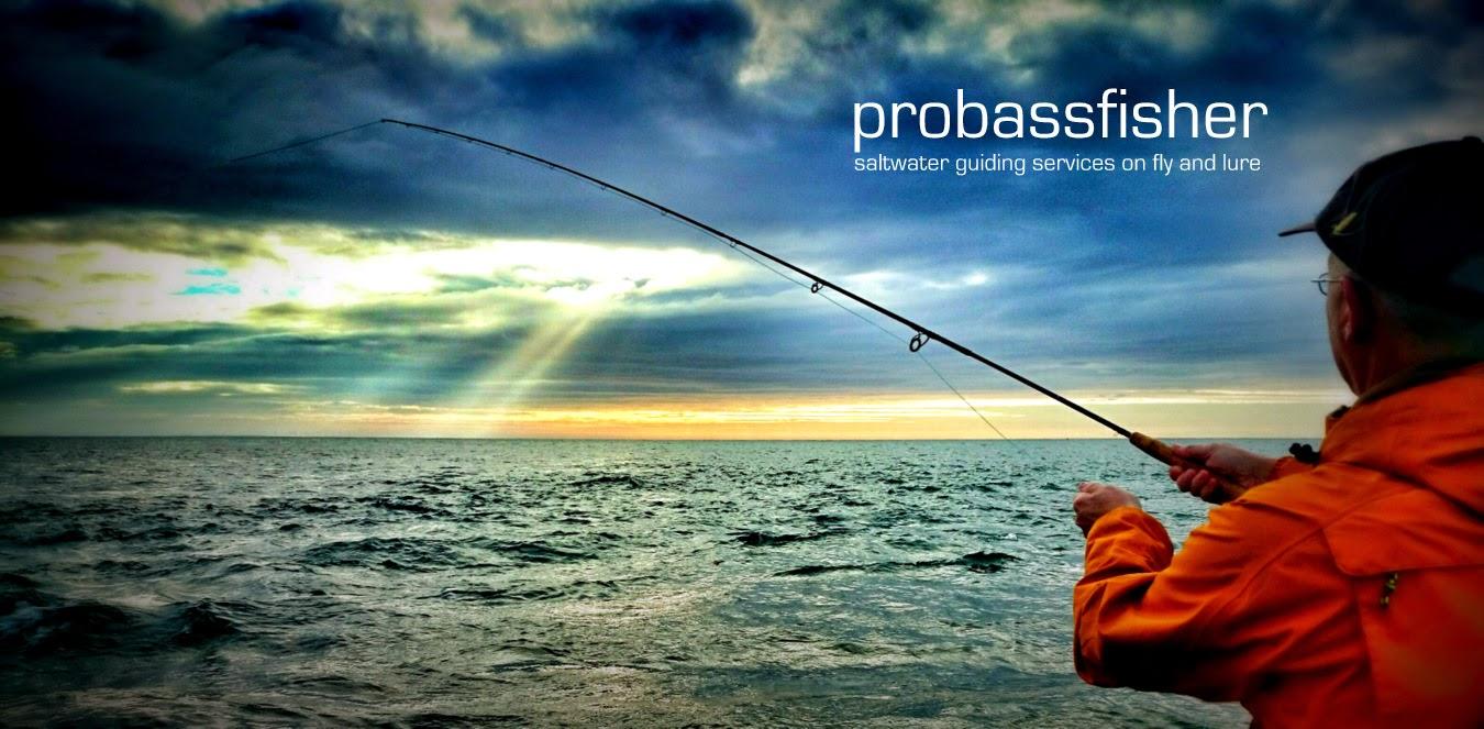 PROBASSFISHER