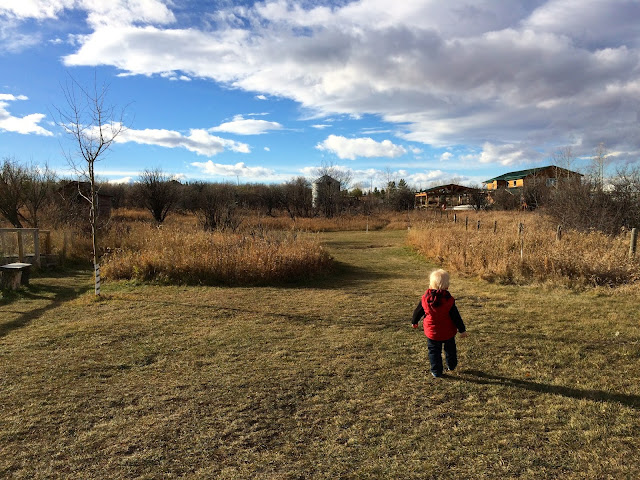 Kayben Farms Okotoks Alberta