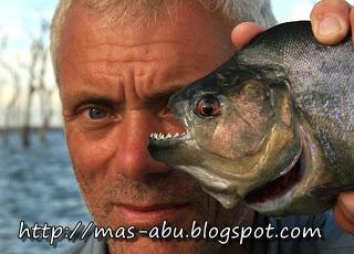 3. Vampire Piranha