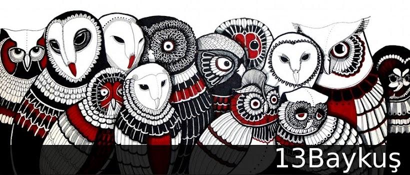 13 Baykus
