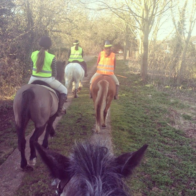 Horse riding and hacking with hi-vis in the countryside