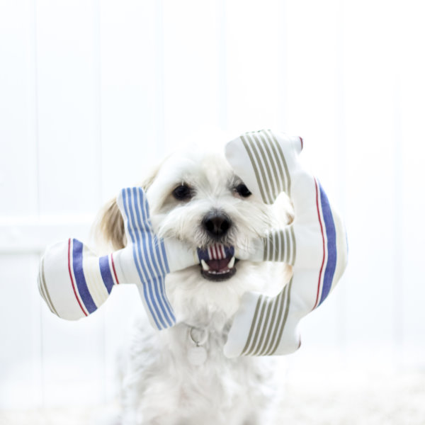 Selbst gemachter Anker als Hundespielzeug.
