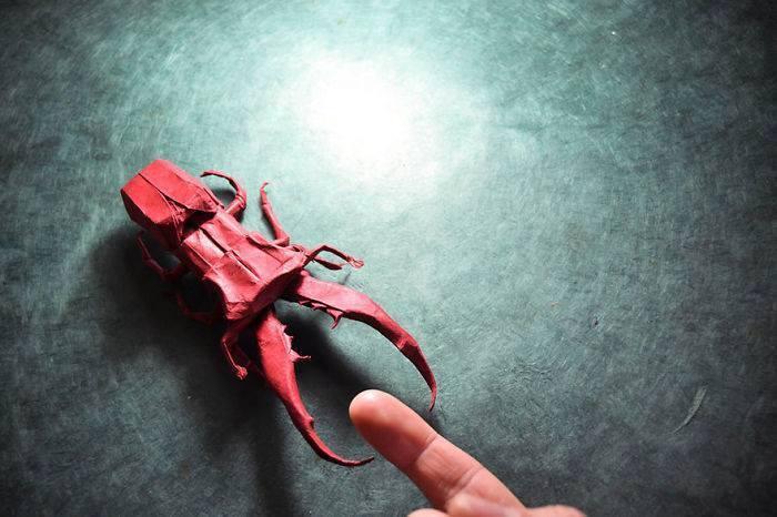 origami-serangga