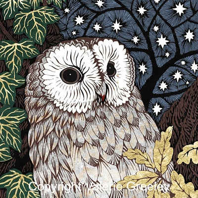 Detail of owl illustration from Can It Be True.