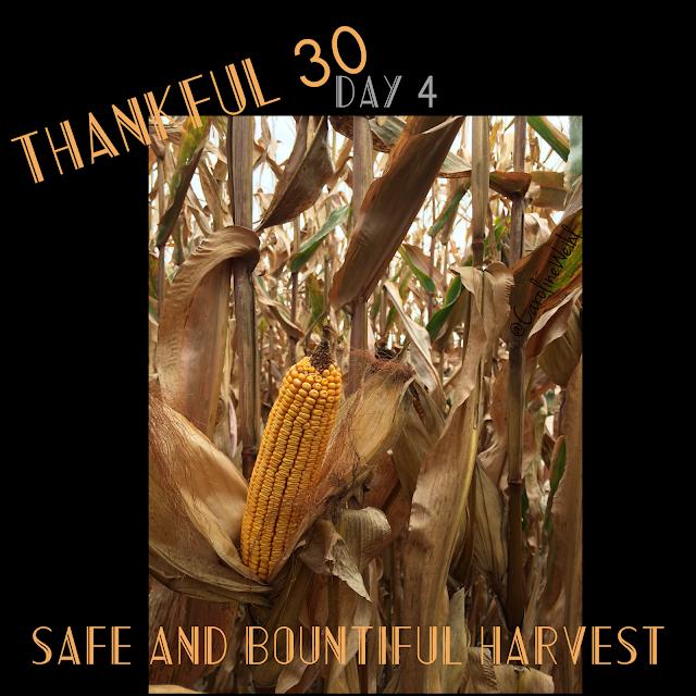 Safe, bountiful harvest