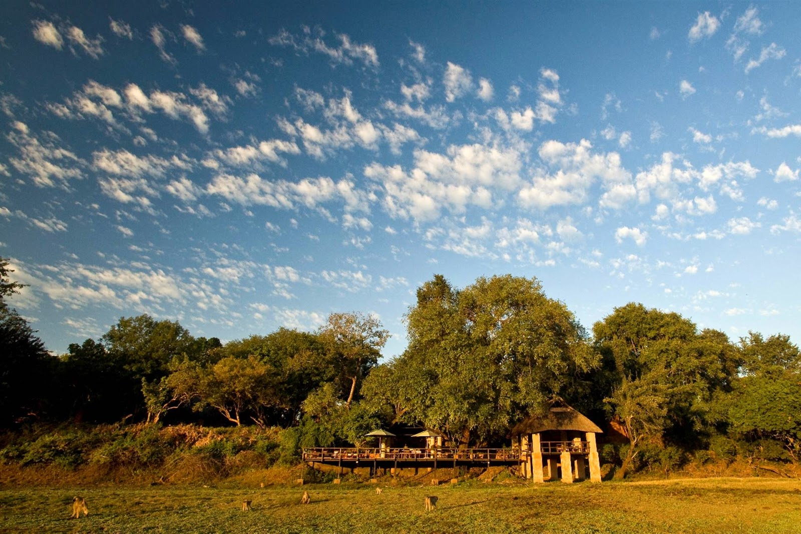 Kapani Zambia
