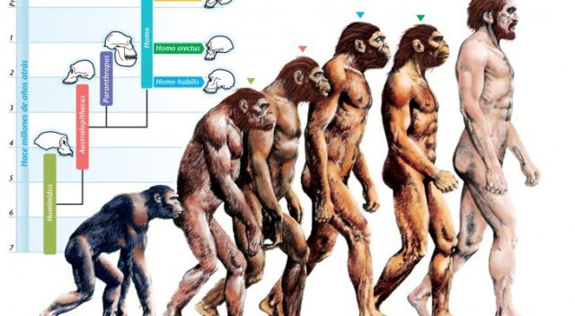 theory of evolution is false science prrof