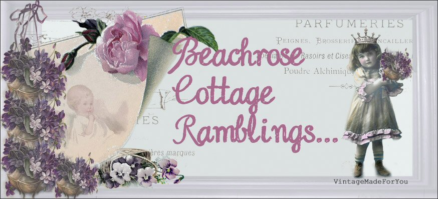 Beachrose Cottage Ramblings