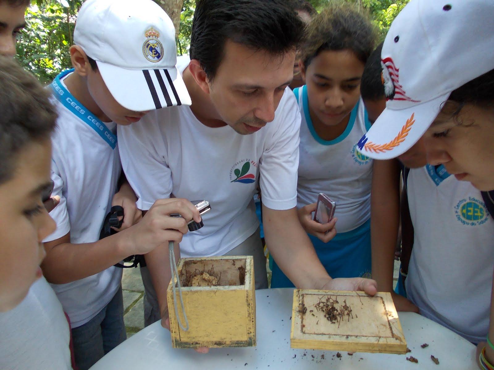 Os alunos se encantam com as abelhas nativas do Parque Estadual da Pedra Branca