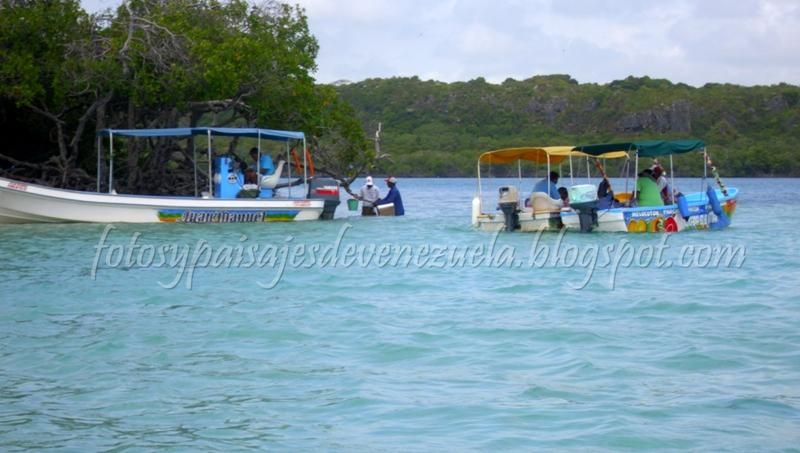 Fotos y paisajes de venezuela piscina los juanes for Piscinas naturales juan adalid